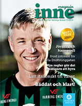 Magasin Inne 2014 nr 1